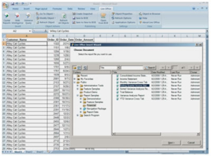 crystal 3 300x221 - Crystal Reports® Server