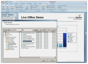 crystal 4 300x220 - Crystal Reports® Server