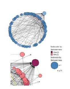 network 2 - Сетевой анализ
