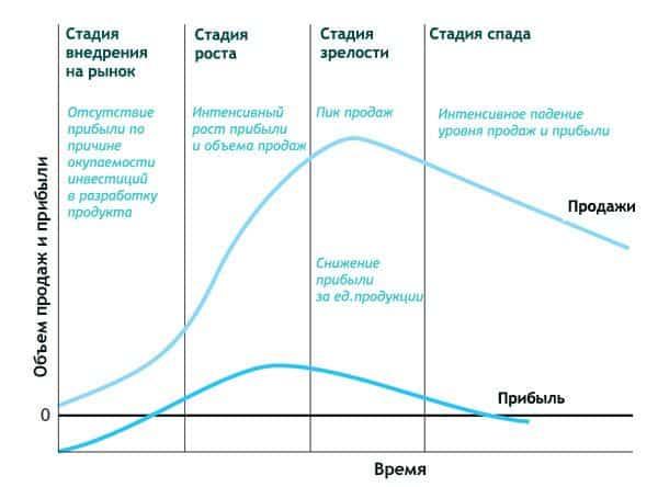 life cycle - Теория жизненного цикла: подробный обзор
