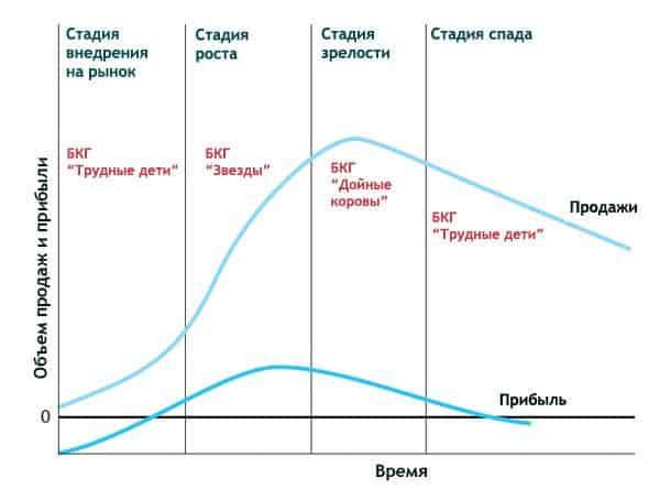 life cycle bcg - Теория жизненного цикла: подробный обзор