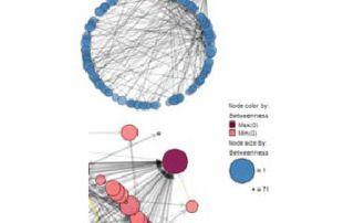 network 2 320x202 - Аналитика в маркетинге