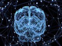 25488 1 - Что может сделать машинное обучение для вашего бизнеса прямо сейчас?