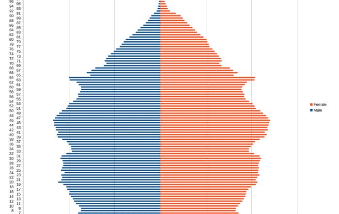 population pyramid for the united kingdom using 2011 census data 700x441 - Визуализация данных - Как правильно выбрать тип диаграммы?
