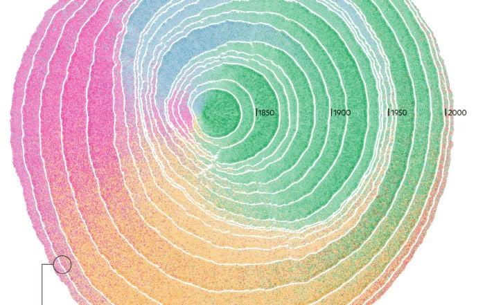 tree qa 2x 700x441 - Лучшие визуализации